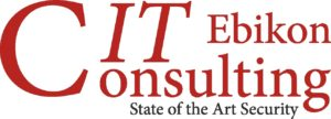 IT-Consulting-Ebikon